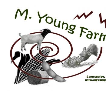 Image M. Young Farms